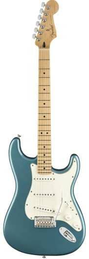 Player Stratocaster MN TPL
