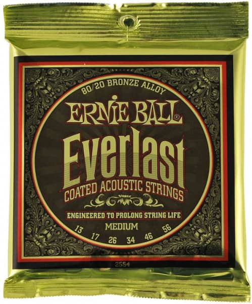 2554 Everlast Bronze Medium
