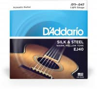 EJ40 - Acoustic Folk Guitar Silk & Steel 11-47